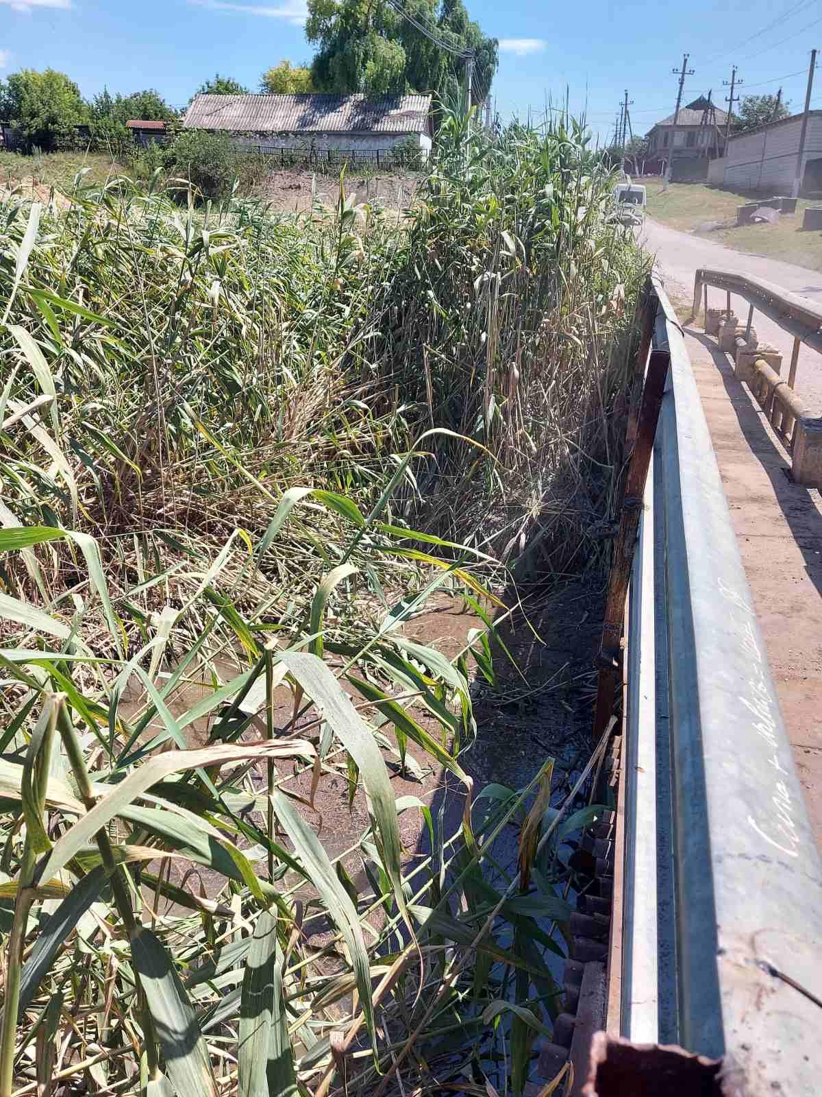 В селе Башкалия, район Басарабяска ведутся работы по очистке моста через водоотводный канал.